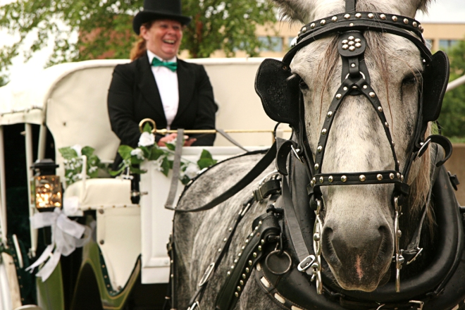 original MN wedding photography - horse and carriage